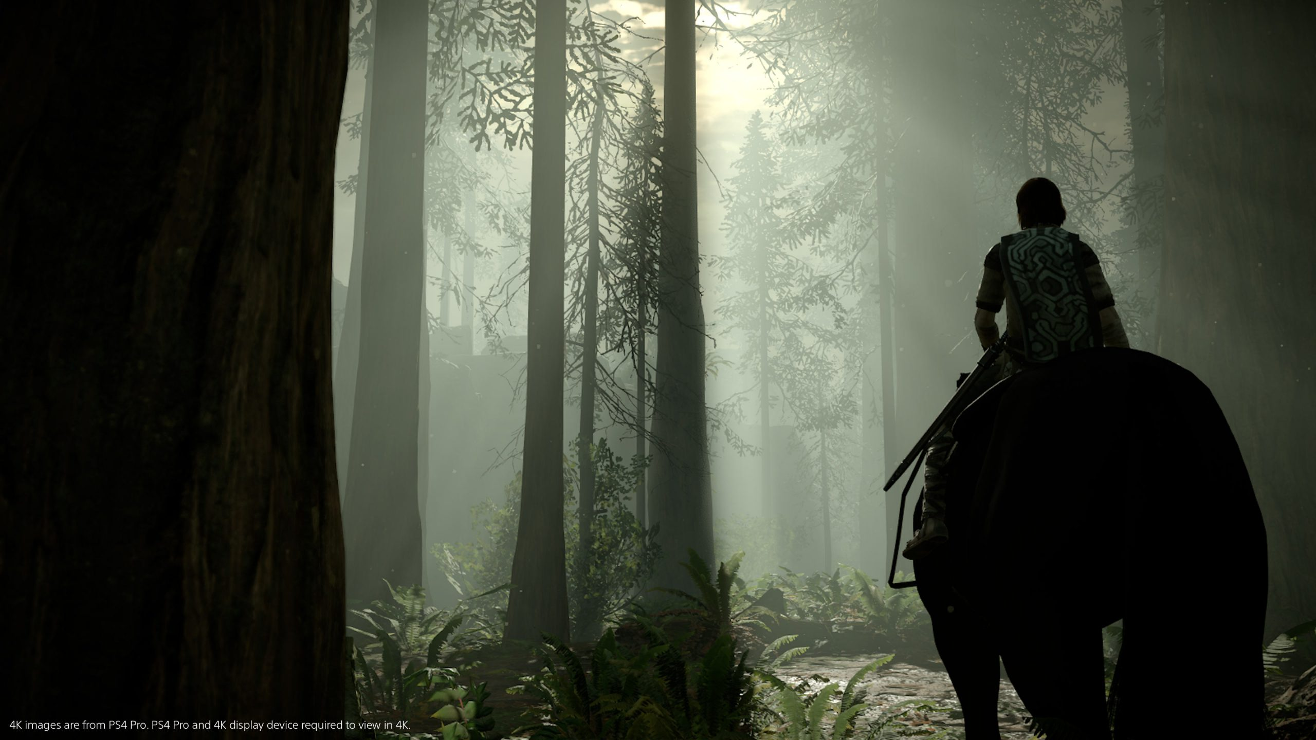 Shadow of the Colossus PS4 image 03