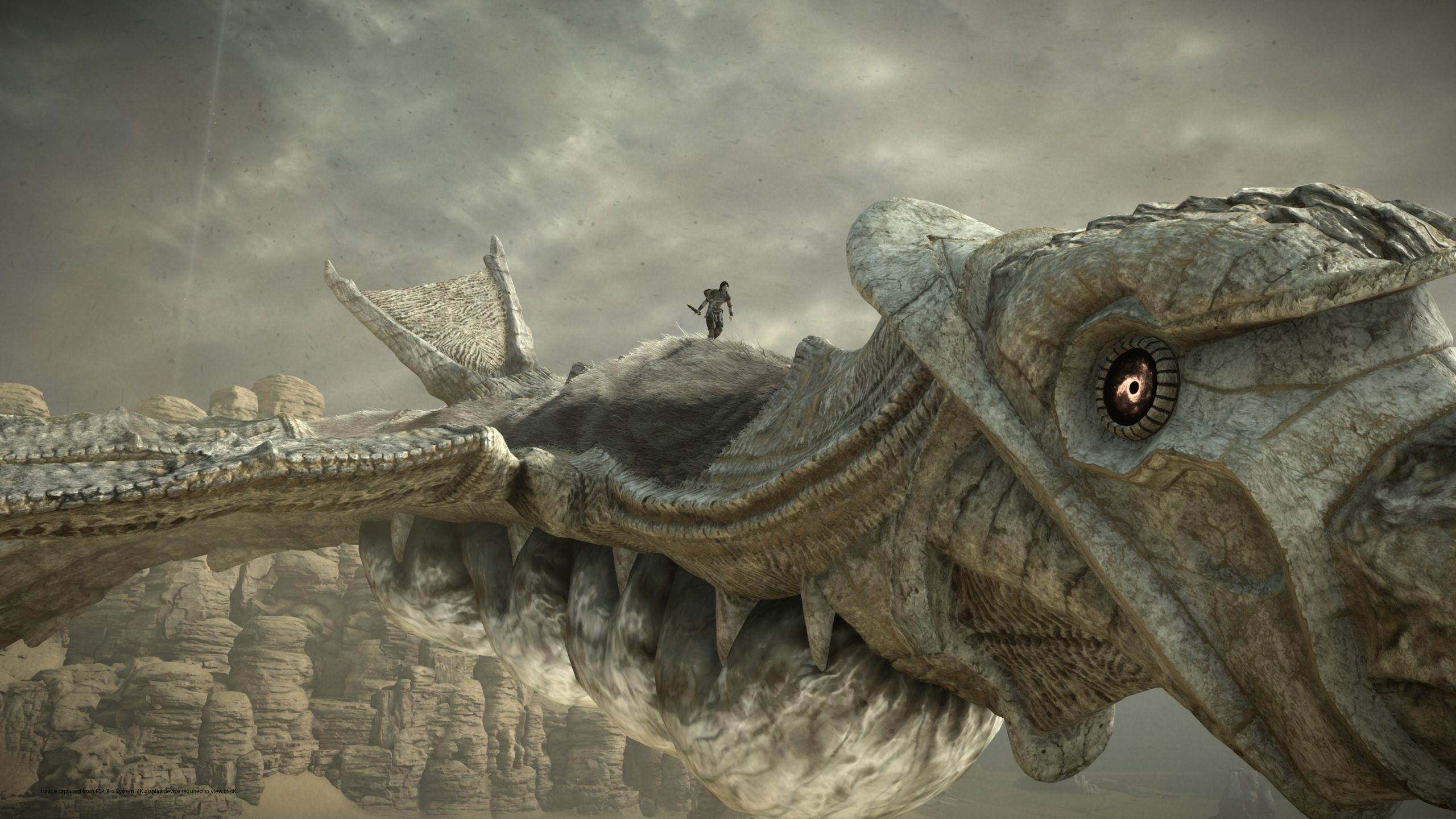 Shadow of the Colossus PS4 image 04