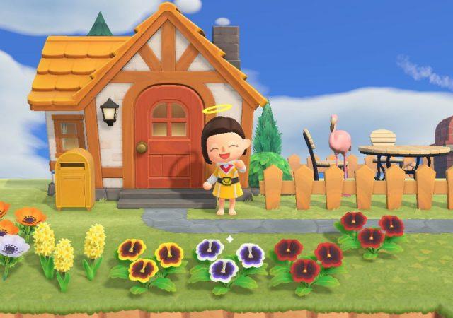 Animal Crossing New Horizons image 11