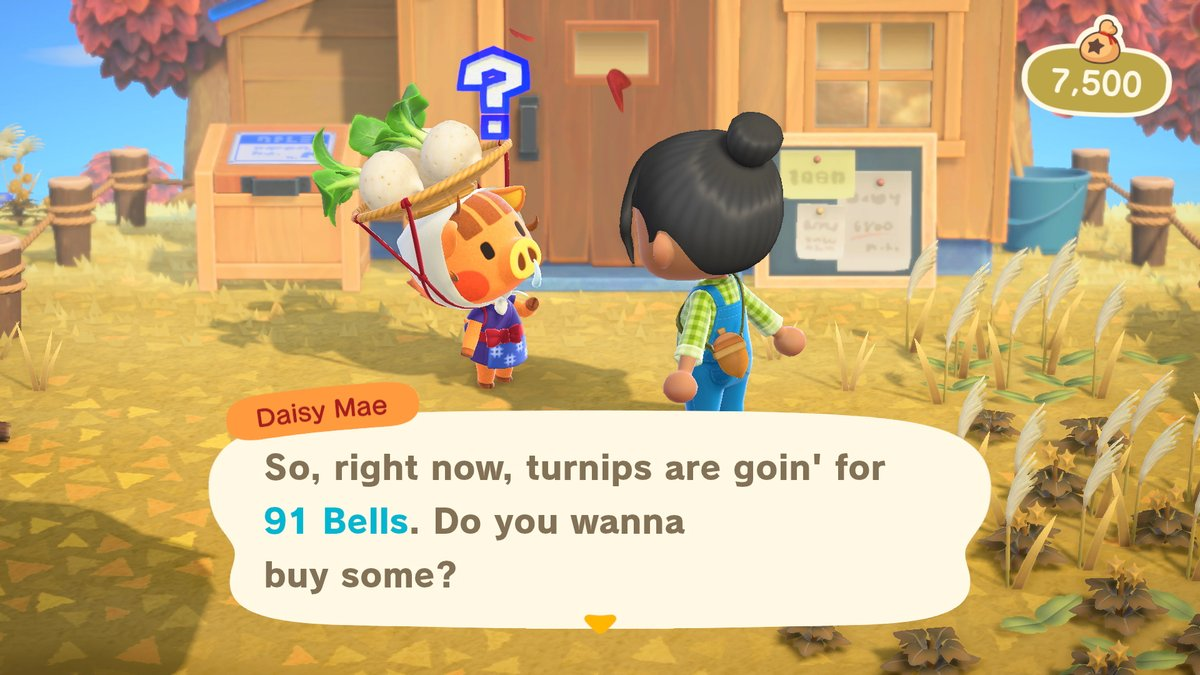 Animal Crossing New Horizons image 3