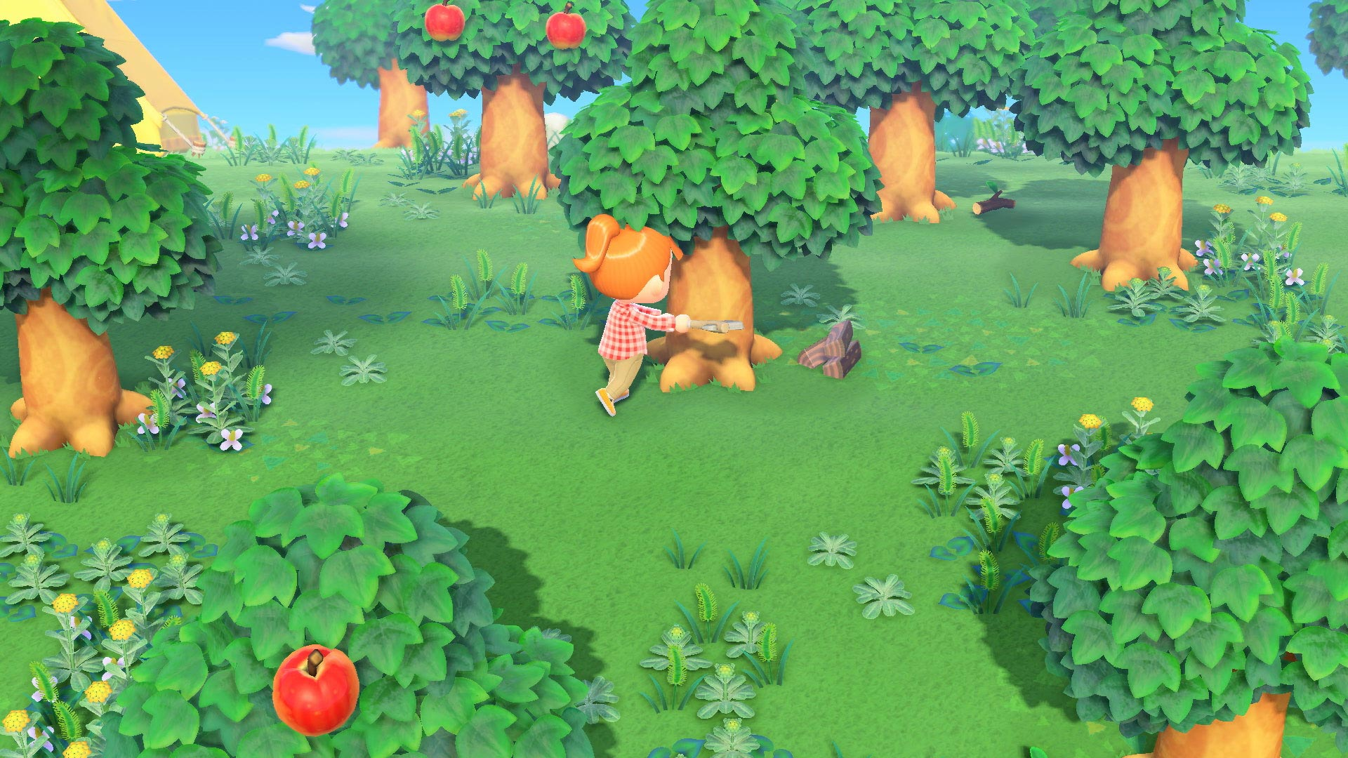 Animal Crossing New Horizons image 6